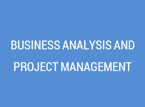 Business Analysis & Project Management Services