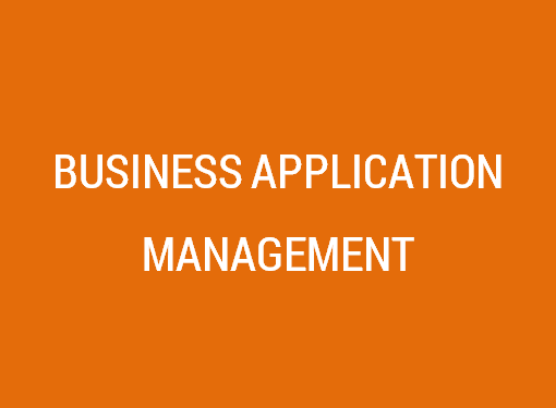 Business Application Management Services